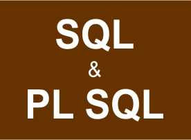 PLSQL Training